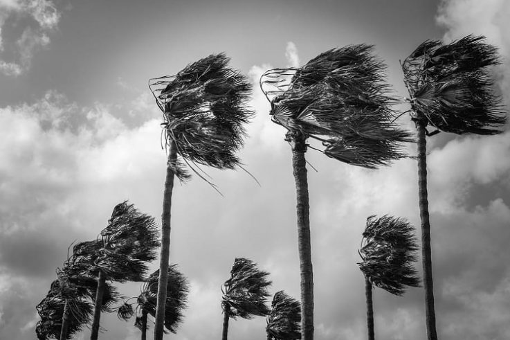 Getting Your Home Ready for Hurricane Season